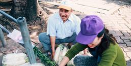 Hàng trăm người đến CV Thống Nhất tham gia 'giải cứu củ cải' giúp người nông dân khỏi cảnh mất mùa