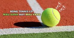 """Câu hỏi """"hóc búa"""" gây tranh cãi nhất hiện nay: Bóng tennis có màu xanh hay màu vàng?"""