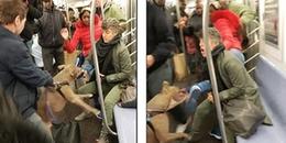 Hình ảnh chó pitpull điên cuồng lao vào tấn công người trên tàu điện gây sốc MXH