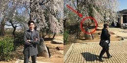 yan.vn - tin sao, ngôi sao - Chưa kịp hí hửng vì ảnh được triệu like, Lee Jong Suk đã phải điêu đứng vì bị fan bóc mẽ