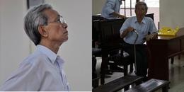 Vũng Tàu: Cụ ông 77 tuổi xâm hại bé gái được giảm án từ 3 năm tù xuống 18 tháng tù treo
