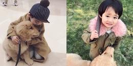 Gặp gỡ tình bạn 'vàng' của cậu bé Hàn Quốc và thú cưng của mình
