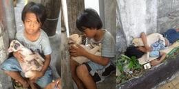 Cậu bé ăn xin và chú chó lang thang: Câu chuyện cảm động về tình bạn và cái kết tuyệt vời