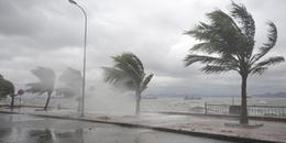 Cảnh báo: Áp thấp nhiệt đới mạnh lên thành bão số 2, gió giật cấp 10