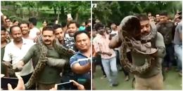 Vắt con trăn khổng lồ dài hơn 10m lên cổ để chụp ảnh, người đàn ông suýt mất mạng!