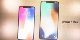iOS 12 vô tình hé lộ về chiếc iPhone X Plus cỡ lớn