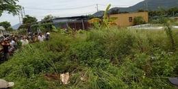 Đà Nẵng: Người dân tá hỏa phát hiện thi thể phân huỷ, bốc mùi hôi thối trong bụi rậm