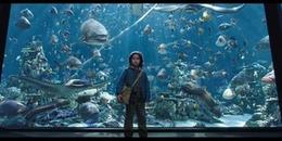 Mãn nhãn với khung cảnh hùng vĩ choáng ngợp của biển sâu trong trailer chính thức của Aquaman!