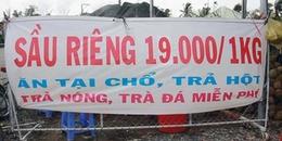 Sầu riêng đổ bộ giá 19.000 đồng/kg, dân ùn ùn kéo đến ăn thả ga