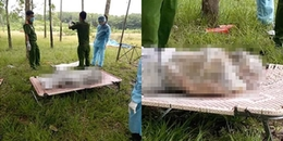 Bình Phước: Phát hiện thi thể bị giấu vào bao tải trong rừng cao su