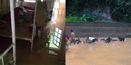 Sơn La: Mưa lũ đổ về bất ngờ, trường học chìm trong biển nước, thầy trò hốt hoảng chạy lũ