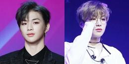 Lần đầu tiên trong lịch sử Kpop, một idol chưa solo đã có Daesang cao quý cho riêng mình