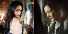 Tranh giải Ảnh hậu Kim Mã với Châu Tấn và Chương Tử Di, diễn xuất của Dương Mịch tốt đến vậy sao?