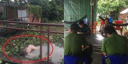 Cần thủ hoảng hồn vứt cần câu bỏ chạy khi thấy thi thể người đàn ông không mặc đồ trôi trên sông SG