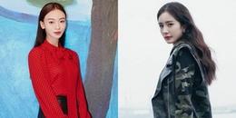 Dương Mịch - Ngô Cẩn Ngôn dự chung sự kiện, Cnet bình phẩm: '1 bên là nô tỳ, 1 bên là Hoàng hậu'
