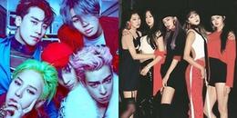 Những nhóm nhạc hiếm hoi của Kpop không có khái niệm thành viên bất tài