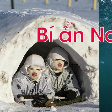 Bí ẩn cuộc sống: 7 thứ gây sốc được tìm thấy ở Bắc Cực