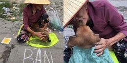 """Xót xa hình ảnh """"nụ hôn từ biệt"""" của cụ già và chú chó nhỏ giữa phố Sài Gòn khiến người xem bật khóc"""