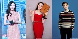 Top sao Cbiz bị ghét nhất: Dương Mịch - Nhiệt Ba góp mặt, Đặng Luân lọt top với lý do khó đỡ
