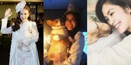 Sướng như cún cưng của sao Việt: Được tổ chức sinh nhật, được cho đi cả spa