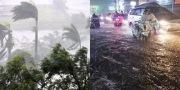 Khẩn cấp: Áp thấp nhiệt đới đã mạnh lên thành cơn bão số 8