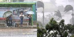 Đêm nay áp thấp nhiệt đới 'quét' qua TP.HCM, học sinh có thể được nghỉ học