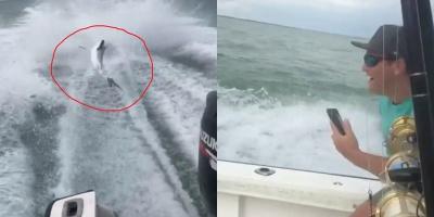 Hành hạ cá mập dã man, 3 thanh niên lập tức bị cảnh sát bắt giữ