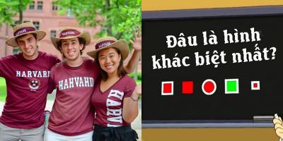 Sinh viên Harvard mất 40 giây mới giải được câu đố này, còn bạn thì sao?