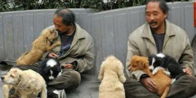 Người đàn ông nghèo khó cưu mang đàn chó khiến CĐM cảm phục