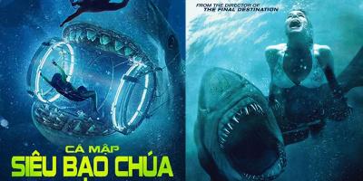 Top 8 bộ phim về cá mập haynhất mọi thời đại