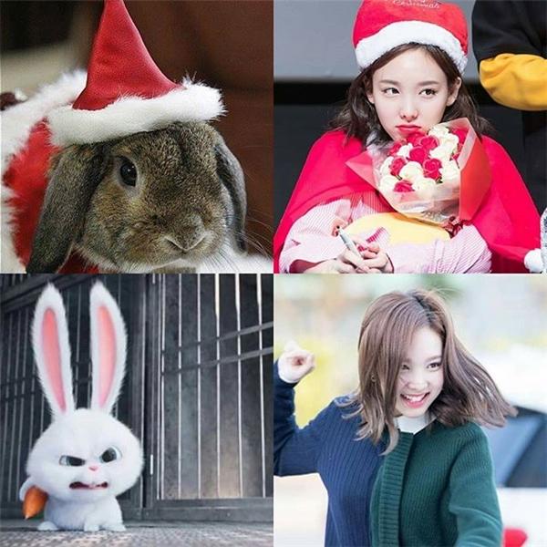 """Vô vàn biểu cảm đáng yêu của loài thỏ được Nayeon """"sao chép"""" rất nhiệt tình."""