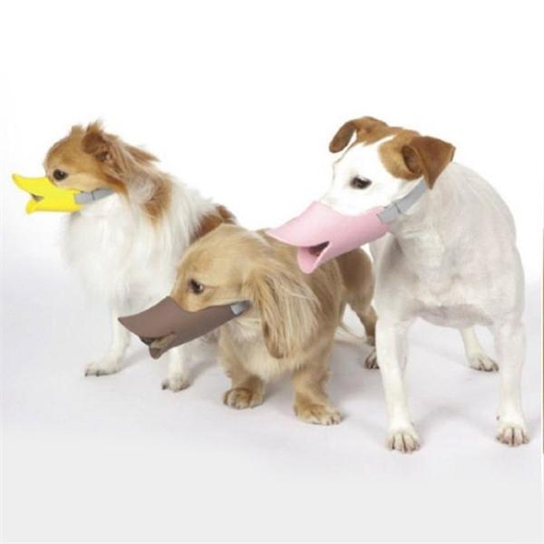 Ngỡ chỉ có ở thời hiện đại nhưng luật bắt rọ mõm cún cưng khi ra đường đã xuất hiện từ thời cổ đại