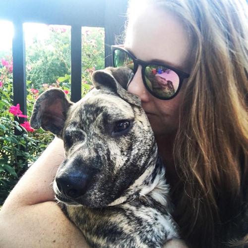 Tại đây, khuôn mặt biến dạng của chú chó được cho là do bị đánh bởi một vật cứng vào đầu, chứ không phải bị cắn dẫn đến nhiễm trùng. Con vật cần phẫu thuật hàm và tiếp tục điều trị, nhưng chi phí khá lớn.