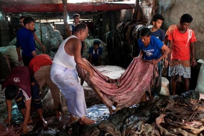 Lượng gia súc bị giết trong ngày Lễ hiến sinh đã lên tới con số đáng kinh ngạc