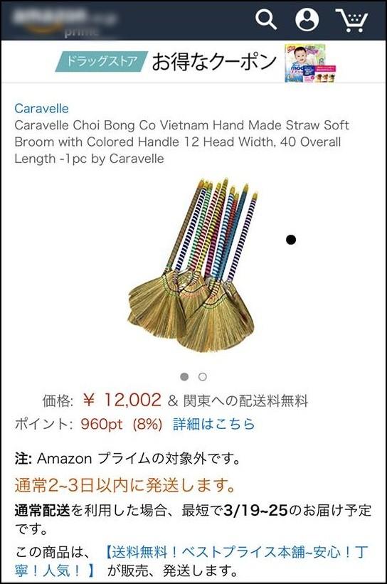 Mấy bạn nào sang Nhật thì nhớ mua chổi ở nhà mang đi nhé. cũng chỉ nhẹ nhàng độ 2,4 triệu VNĐ chứ nhiêu đâu.