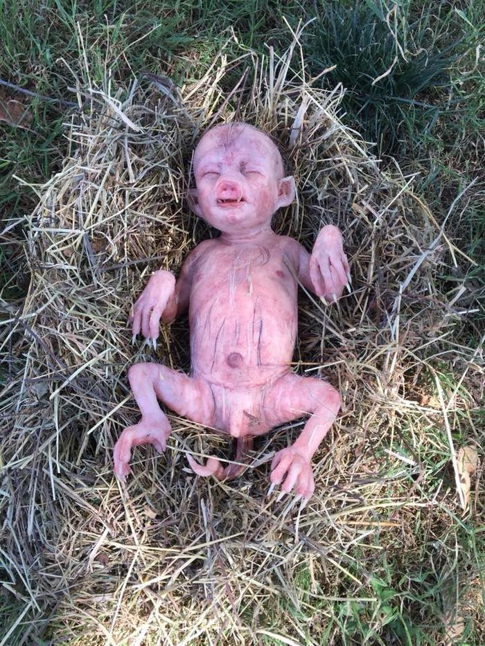 Bí mật đằng sau hiện tượng lợn mẹ đẻ con có hình dạng y hệt em bé sơ sinh gây hoang mang