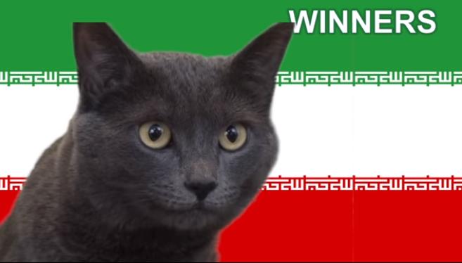 """Có vẻ như chú mèo này làm tiên tri """"hơi lâu"""" rồi đấy!"""