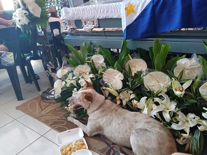 Buboy nằm lặng thinh trước linh cữu của vị giáo sư.