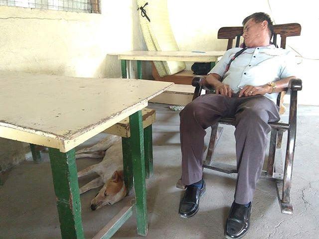 Buboy thường xuyên tới trường và nô đùa cùng vị giáo sư.