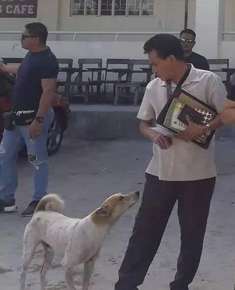 Buboy vốn là một chú chó đi lạcđược vị giáo sư nhặt về nuôi.