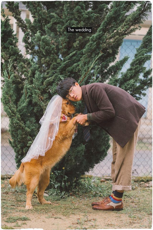 Bộ ảnh của Bình và cún cưng nhận được lượt tương tác cao từ dân mạng.