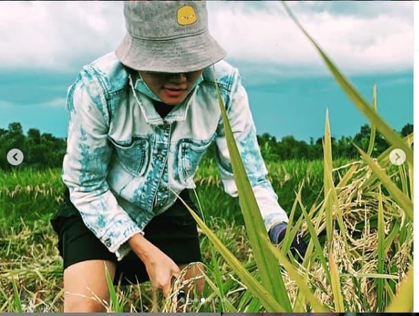 Hết cắt lúa, H'Hen Niê lại cạo hạt điều kiếm từng đồng lẻ ở quê nhà - Tin sao Viet - Tin tuc sao Viet - Scandal sao Viet - Tin tuc cua Sao - Tin cua Sao