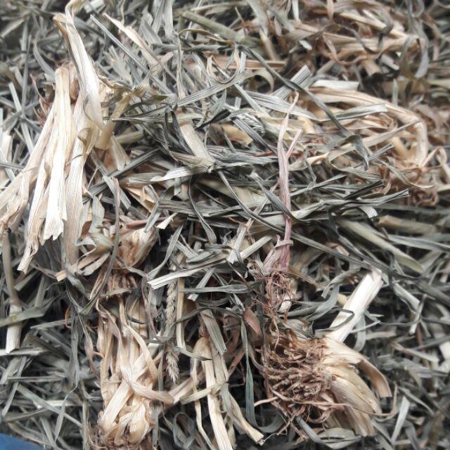 Loại cỏ được dùng làm vị thuốc phổ biến ở nhiều nơi.