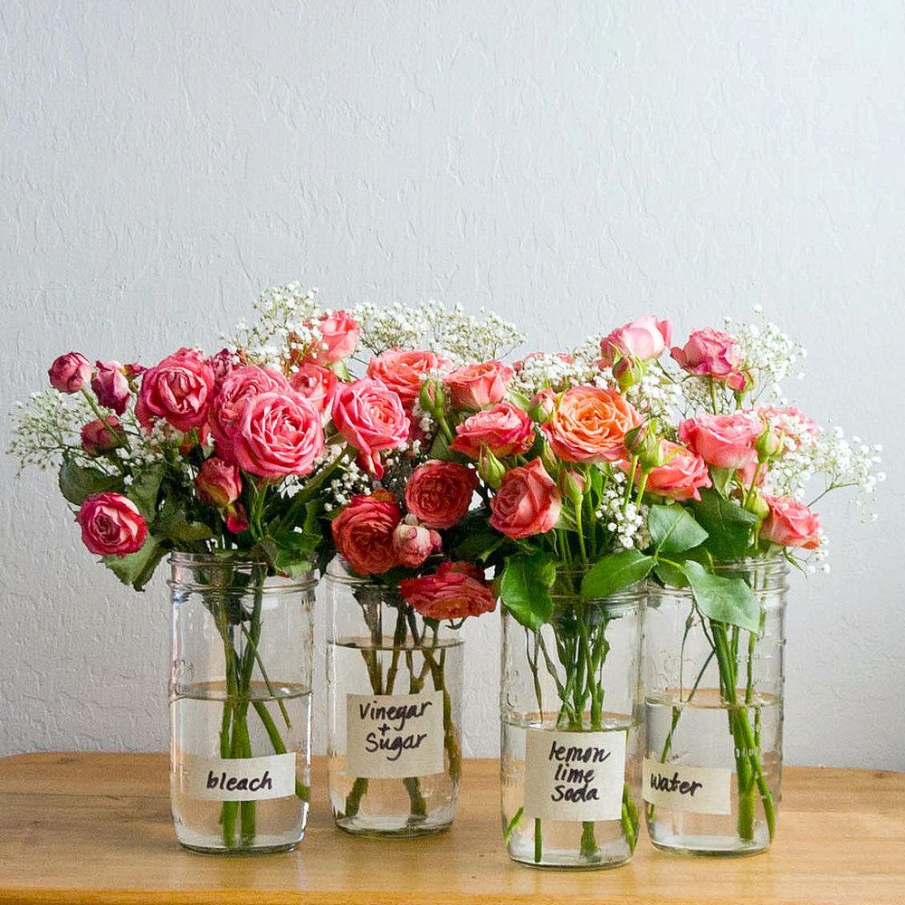 Hoa hồng đại diện cho tình yêu