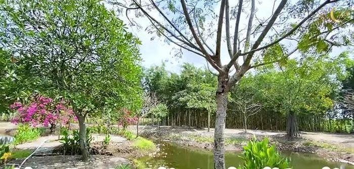 Rất nhiều loại cây được trồng tại đây. (Ảnh: Baomoi) - Tin sao Viet - Tin tuc sao Viet - Scandal sao Viet - Tin tuc cua Sao - Tin cua Sao
