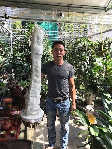 Nghệ nhân Nguyễn Đăng Thoả chia sẻ bí quyết chăm cây cho người mới chơi