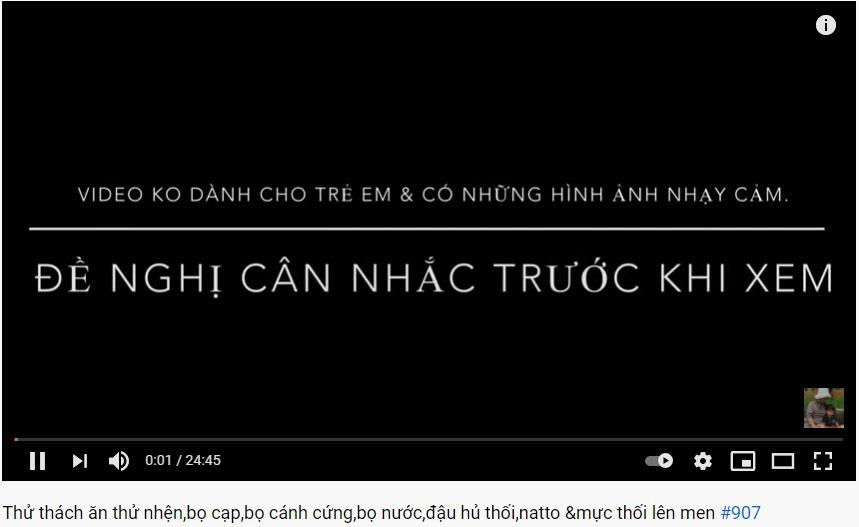 """Dân tình tỏ vẻ """"hài lòng"""" trước cảnh báo ngay đầu video của kênh Quỳnh Trần JP. (Ảnh chụp màn hình)"""