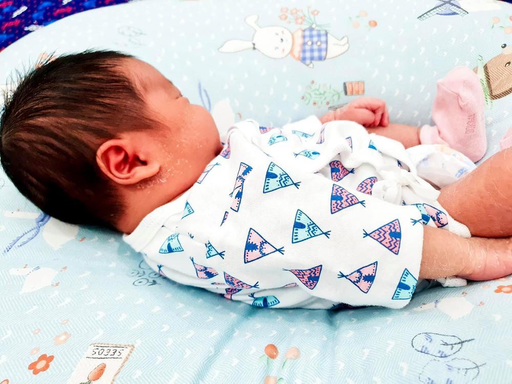 Hình ảnh về bé Voi được Đỗ Mạnh Cường tiết lộ. (Ảnh: FBNV)