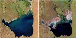 Lục lọi kho ảnh của NASA để thấy Trái đất đã thay đổi khủng khiếp đến thế nào