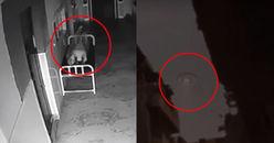 Nếu như không được ghi lại trên camera, chẳng ai có thể tin nổi vào những hiện tượng kinh hoàng này